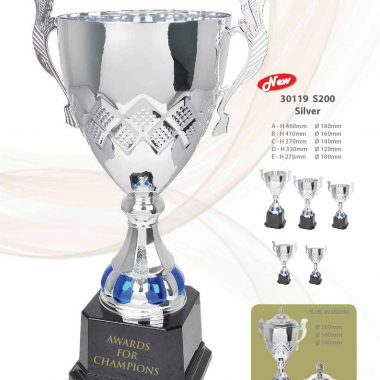 30119 S200 Silver | Awards For Champions | Will Global Trading