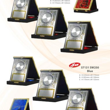 57131 SW240 Red | Awards For Champions | Will Global Trading