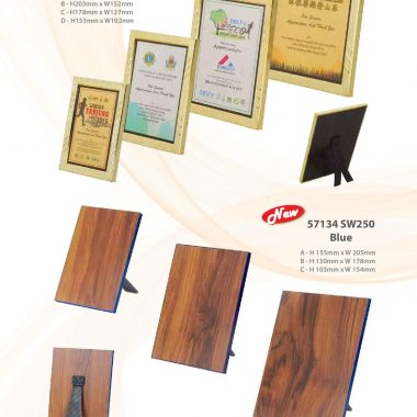 57126 S100 Gold | Awards For Champions | Will Global Trading