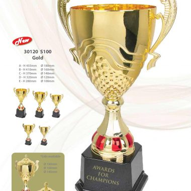 30120 S100 Gold | Awards For Champions | Will Global Trading