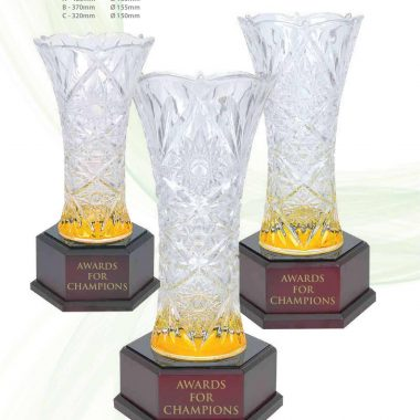 68001 T010 Translucent Gold | Awards For Champions | Will Global Trading