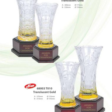 68002 T010 Translucent Gold | Awards For Champions | Will Global Trading