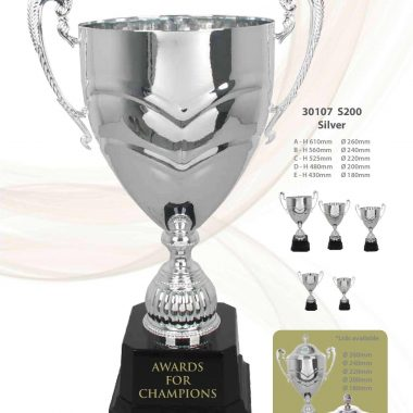 30107 S200 Silver | Awards For Champions | Will Global Trading