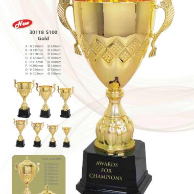 30118 S100 Gold | Awards For Champions | Will Global Trading