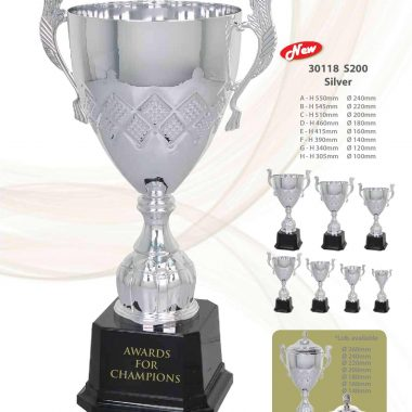 30118 S200 Silver | Awards For Champions | Will Global Trading