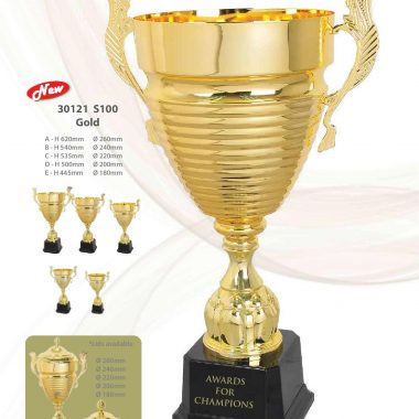 30121 S100 Gold | Awards For Champions | Will Global Trading