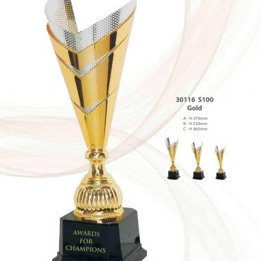 30116 S100 | Awards For Champions | Will Global Trading