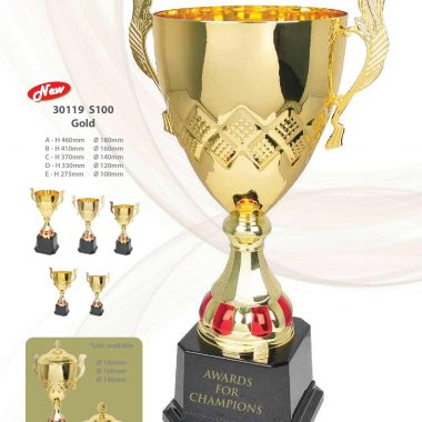 30119 S100 Gold | Awards For Champions | Will Global Trading